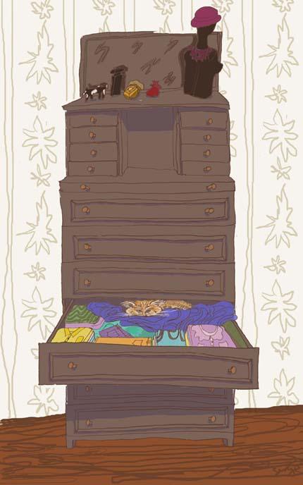 котик в шкафу